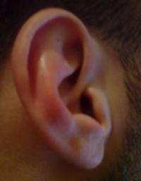 sg-080219-ear.jpg