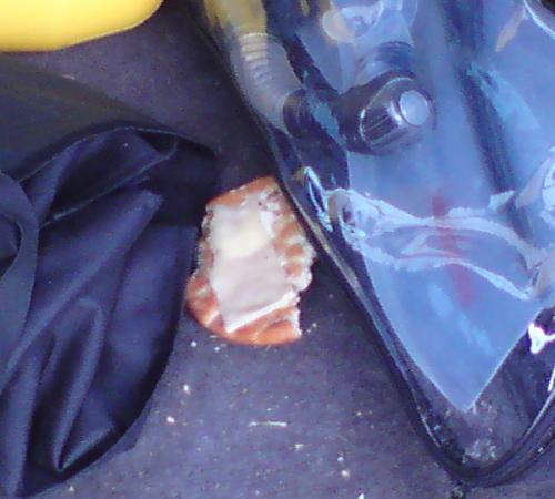 Bagageutrymmet på en familjebil - Med en halväten ostsmörgås mitt bland alla grejer.