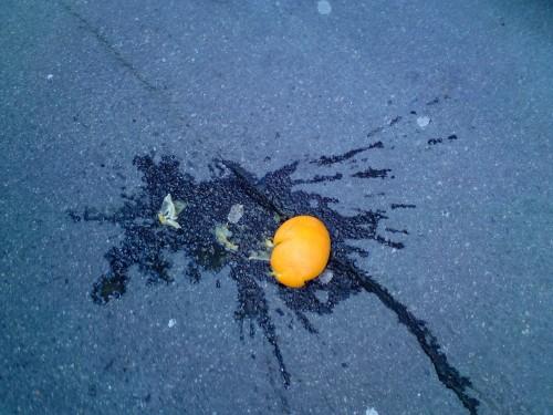 En av många apelsiner som fick sätta livet till